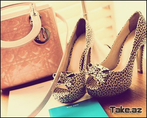 Gorgeous Shoes =)