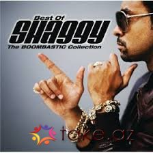 Shaggy feat Brian Thompson-Would you be (2015 mp3)